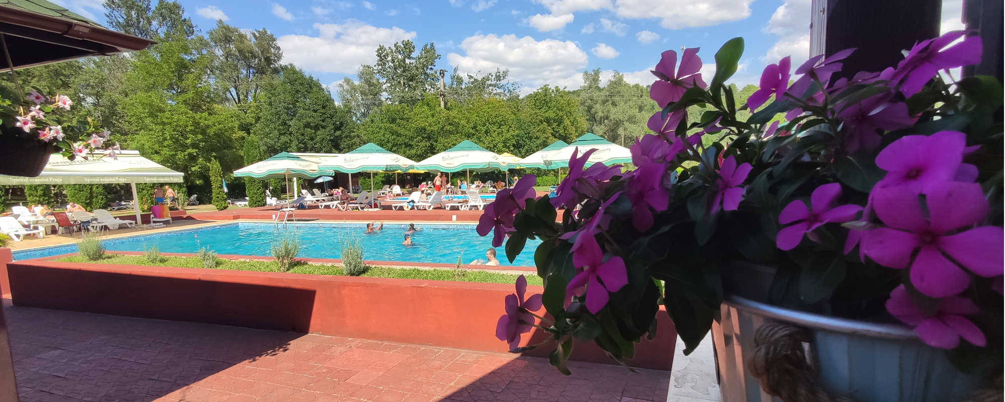 Relaxare la piscina Rock Mill Resort Breaza